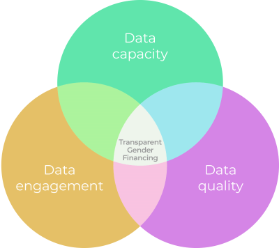 The road to better transparency requires attention to three interrelated but distinct concepts: data capacity, data engagement, and data quality.
